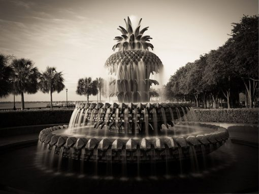 charleston-pineapple-fountain