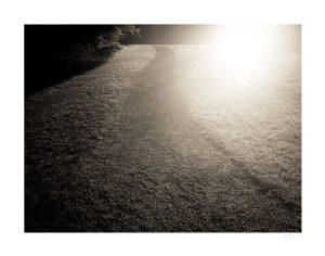 path with light from the sun on side and dark on the other side