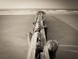 old beach pier in folly beach south carolina