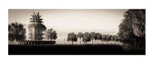 Charleston, South Carolina Pineapple fountain on waterfront | palmetto trees | slow exposure water
